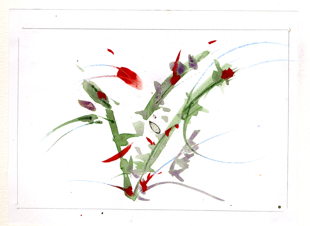 Acquarelli - Fiori